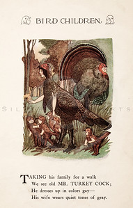 Vintage 1900s Color Illustration of Turkey Cock Bird Children from BIRD CHILDREN by Elizabeth Gorden.  The natural patina, age-toning, imperfections, and old paper antiquing of this vintage 20th century illustration are preserved in this image.
