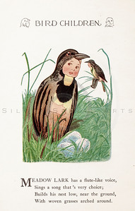 Vintage 1900s Color Illustration of Meadow Lark Bird Children from BIRD CHILDREN by Elizabeth Gorden.  The natural patina, age-toning, imperfections, and old paper antiquing of this vintage 20th century illustration are preserved in this image.