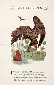 Vintage 1900s Color Illustration of Turkey Buzzard Bird Children from BIRD CHILDREN by Elizabeth Gorden.  The natural patina, age-toning, imperfections, and old paper antiquing of this vintage 20th century illustration are preserved in this image.
