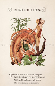 Vintage 1900s Color Illustration of Bird of Paradise Bird Children from BIRD CHILDREN by Elizabeth Gorden.  The natural patina, age-toning, imperfections, and old paper antiquing of this vintage 20th century illustration are preserved in this image.