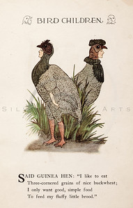 Vintage 1900s Color Illustration of Guinea Hen Bird Children from BIRD CHILDREN by Elizabeth Gorden.  The natural patina, age-toning, imperfections, and old paper antiquing of this vintage 20th century illustration are preserved in this image.