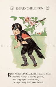 Vintage 1900s Color Illustration of Blackbird  Children from BIRD CHILDREN by Elizabeth Gorden.  The natural patina, age-toning, imperfections, and old paper antiquing of this vintage 20th century illustration are preserved in this image.