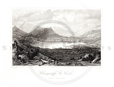 Vintage 1800s Black & White Illustration of Ireland Landscape - PICTURESQUE IRELAND by John Savage.  The natural patina, age-toning, imperfections, and old paper antiquing of this vintage 19th century illustration are preserved in this image.
