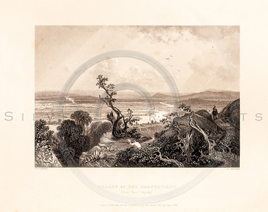Vintage illustration of a Connecticut Valley from American Scenery by W.H. Bartlett, 1839.  Antique digital download of old print - Connecticut, valley, tree, bushes, plants, landscape, American, America.  The natural age-toning, paper stains, and antique printing imperfections are preserved in this 1800s stock image.