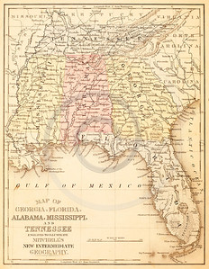 Vintage illustration of the Gulf of Mexico, Florida, Georgia, Alabama, Mississippi, and Tennessee Map. Antique digital download of old print - Florida, Georgia, Alabama, Mississippi, Gulf of Mexico; South; USA; United States; America; map; cartography; geography; world; land; maps.  The natural age-toning, paper stains, and antique printing imperfections are preserved in this 1900s stock image.