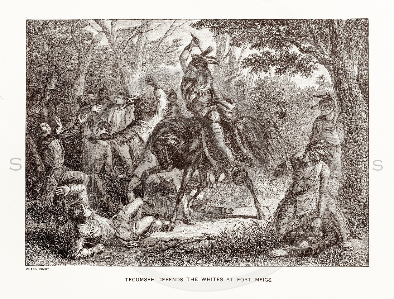 Vintage 1800s Sepia Illustration of Tecumseh.  The natural patina, age-toning, imperfections, and old paper antiquing of this vintage 19th century illustration are preserved in this image.