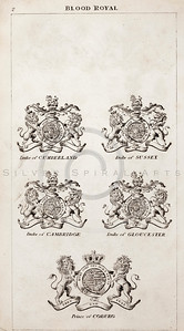 Vintage 1800s Sepia Copper Engraving Illustration of British Royal Coats of Arms from THE PRESENT PEERAGE OF THE UNITED KINGDOM by James Ridgway in London.  The natural patina, age-toning, imperfections, and old paper antiquing of this vintage 19th century illustration are preserved in this image.