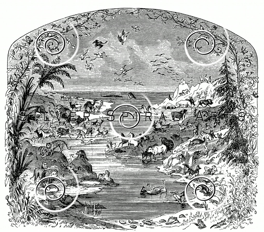 Vintage Animals on Lake Illustration - 1800s Animal Images
