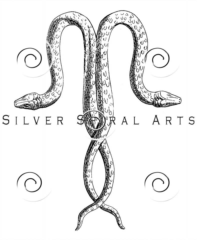 Vintage Entwined Snakes Illustration - 1800s Snake Images.