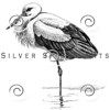 Vintage White Stork Bird Illustration - 1800s Birds Images.