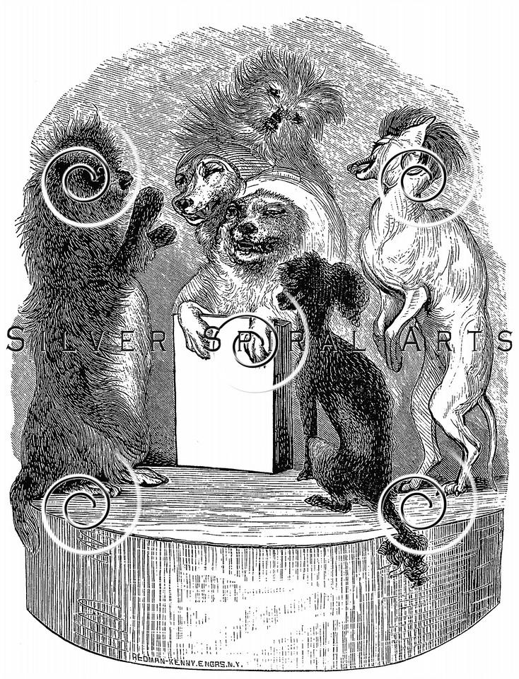 Vintage Civilized Dogs Illustration - 1800s Dog Images