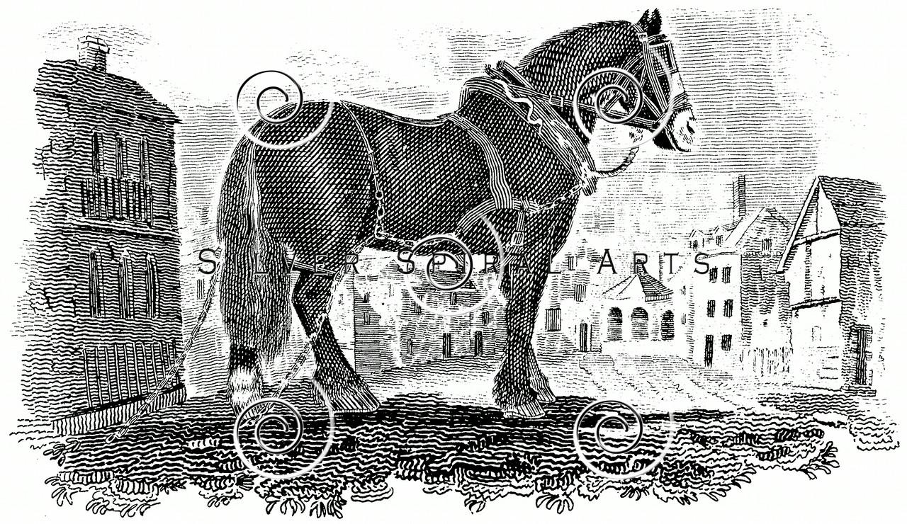 Vintage Cart Horse Illustration - 1800s Horses Images.