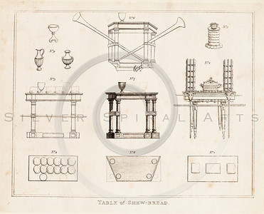 Vintage 1700s Sepia Illustration of Column Designs - FRAGMENTS OF THE HOLY SCRIPTURES by Calmet.