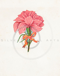 Vintage 1800s Color Illustration of a Flower - GODEY'S & PETERSON'S ETC. MAGAZINE