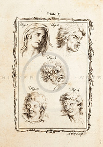 Vintage 1700s Sepia Illustration of Faces - NATURAL HISTORY by Count de Buffon.