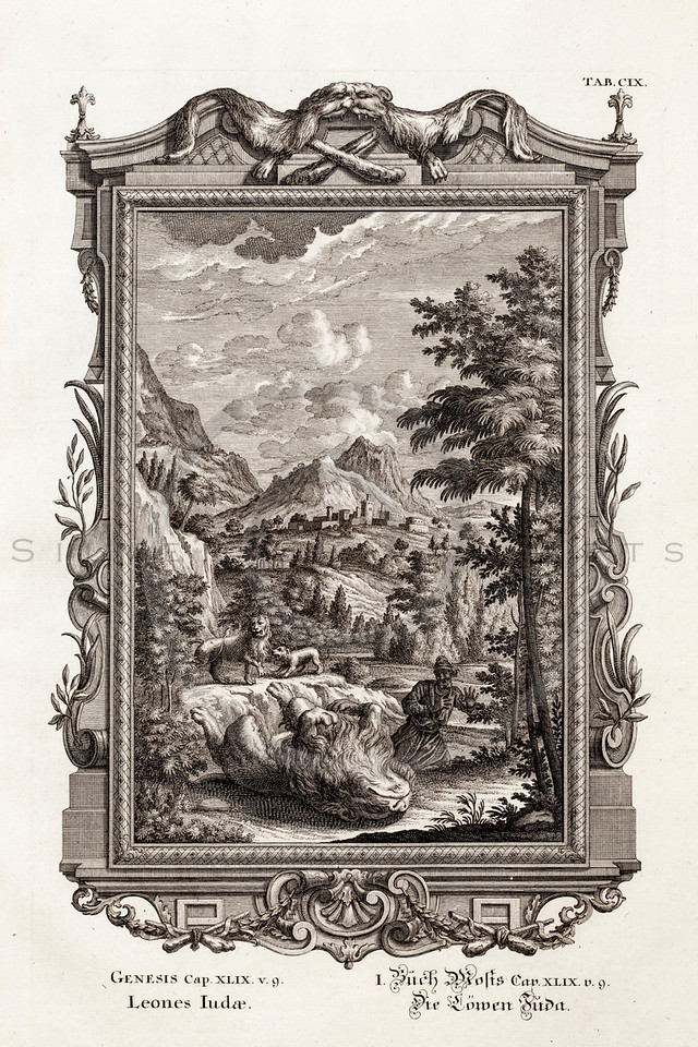 Vintage 1700s Black and White Rococo Copper Engraving Illustration of Man Hunting Lions with Decorative Frame from PHYSICA SACRA by Johan Jacob Scheuchzer.  The natural patina, age-toning, imperfections, and old paper antiquing of this vintage 18th century illustration are preserved in this image.