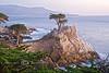 The Lone Cypress, Pebble Beach - Photo by Pat Bonish
