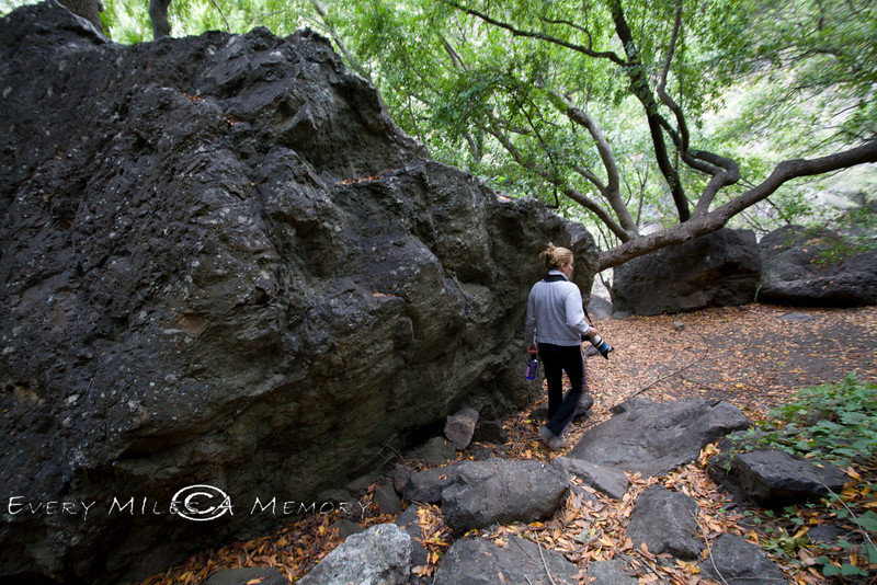 Big Black Volcanic Boulders in the Salmon Creek Area - Photo by Pat Bonish