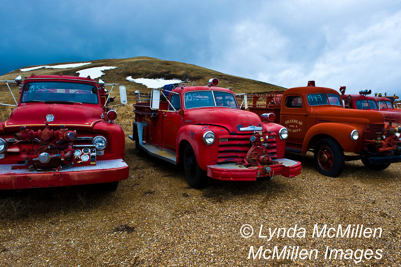 Retired Fire Trucks: 1955 Ford, 1951 Chevy, 1947 International.