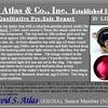 Victorian Garnet and Rose Cut Diamond Serpent Ring 16
