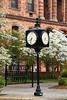 Street Clock and White Dogwood, Portsmouth, Ohio