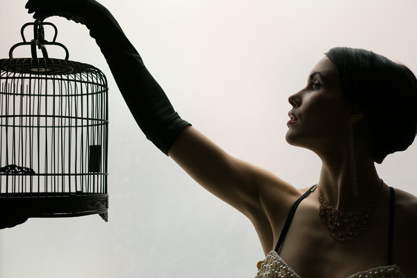 Anastasia Noir Bird Cage