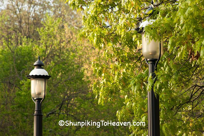 Historic Gas Street Lamp, Cincinnati, Ohio