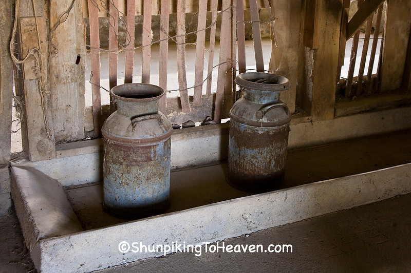 Antique Milk Cans in Feed Trough, Johnson County, Iowa