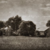 Aunt Clementine's Old House