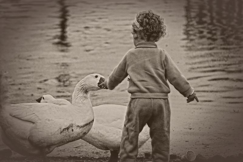 Childhood Wonderment