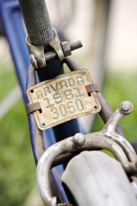 Old Blue Bike with License Plate