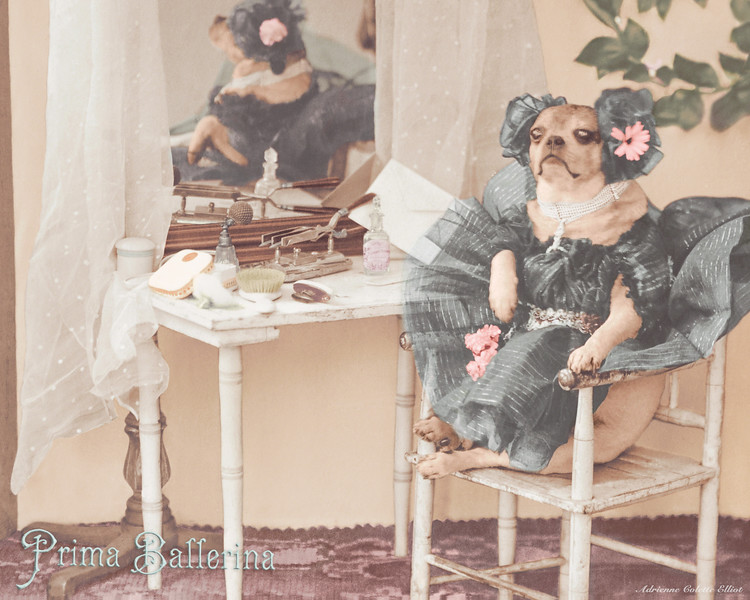 A most lovely Prima Ballerina, preparing for her performance! This charming scene features a century old sepia photograph that has been digitally restored, and then artistically rendered to re-create the hand colored effect that was popular at that time.