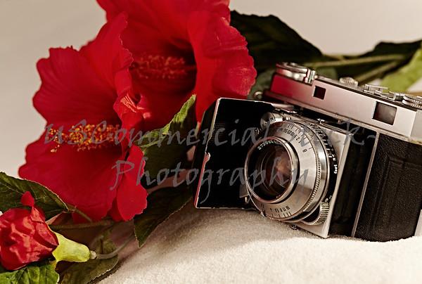 Antique camera with red hibiscus