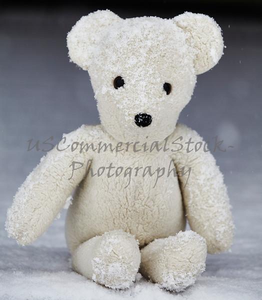 Teddy bear sitting on snow