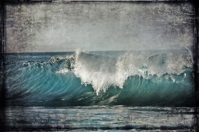 """""""The Blue Wave""""."""