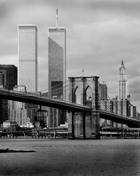 WTC11x14