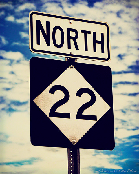 "Presented in a retro/vintage ""Lomo"" film style, this image features one of the new highway 22 signs (minus the M) posted along the scenic drive that follows the Lake Michigan shoreline ""up north"" from Manistee to Travers City."