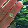 1.15ct Antique Oval Cut Diamond Chunky Bezel Ring 19