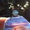3.24ct Antique Cushion Cut Diamond Halo Ring 18