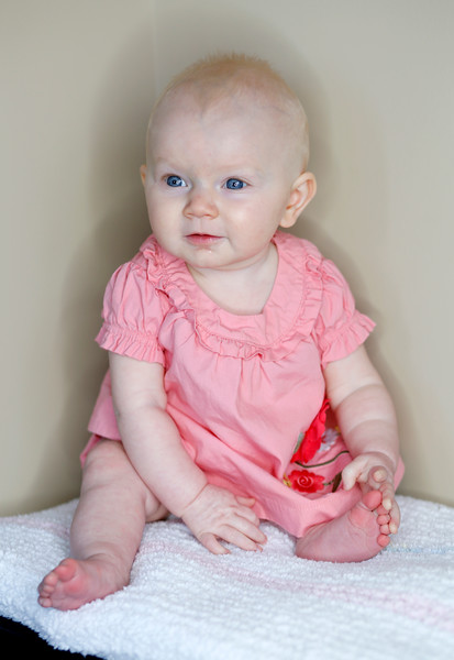 Violet 6 months old photo shoot on Sunday May 15, 2016 in Franklin, Tenn.  Photos by Uncle Donn.