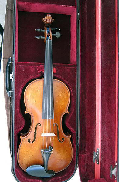 Violin 10