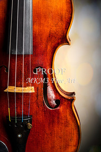 Antique Violin Art Prints Folder
