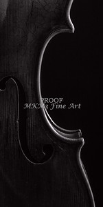 Wall Art Side Light Violin Body Image 1732.42