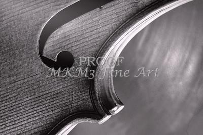 Music Art Violin Body in Black and White 80
