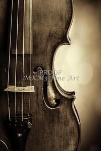 Side Light Antique Violin Image Canvas Art 1732.34