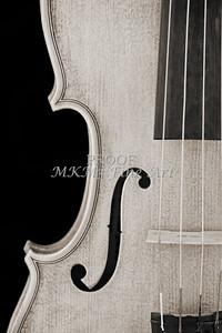 Violin or Viola Photograph