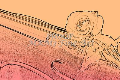Red Rose Violin Viola