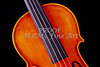 Photograph of a Upper Body Viola Violin in Color 3369.02
