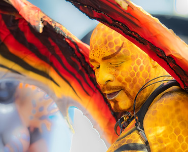 Carnival Colors-St. Croix