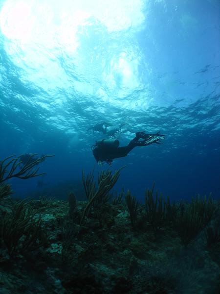 Diver silhouette.